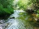 Rio Ovelha, na propriedade